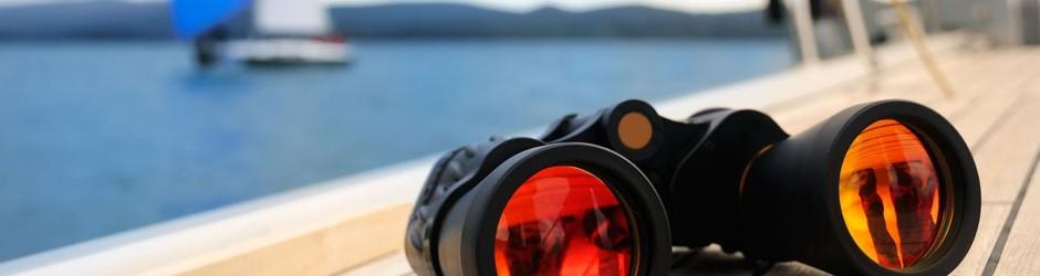 3 Binocular